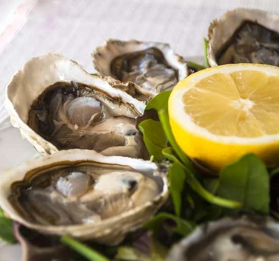 Fine de Claire (French oysters)